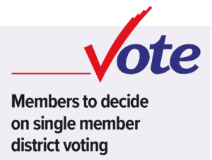 YEC Members to decide on single member district voting