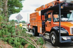 Asplundh tree crews