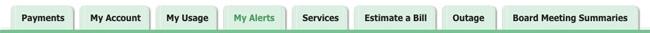 Member Portal Tabs Screenshot