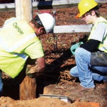 Osmose crew inspects pole for decay and applies external and internal treatment as needed.