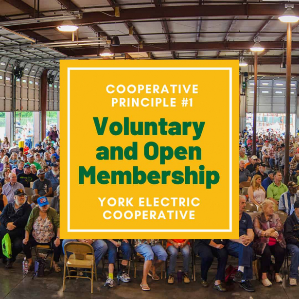 Cooperative Principle #1 is Voluntary and Open Membership
