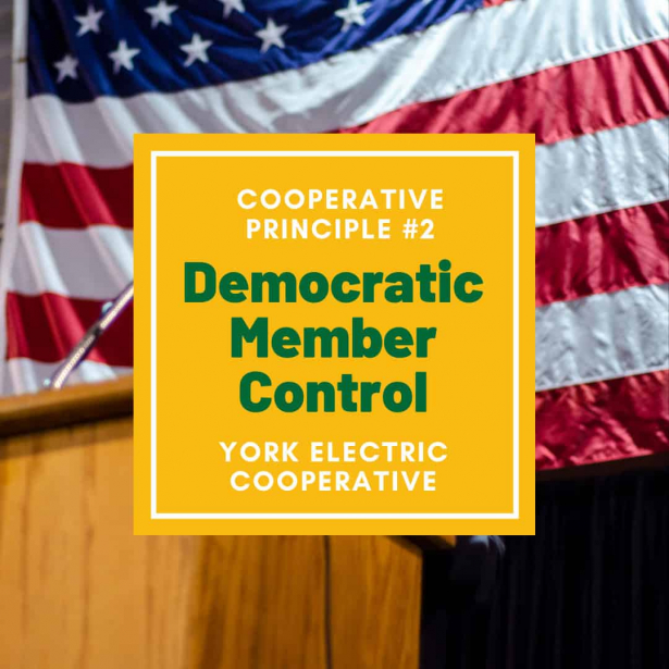Cooperative Principle #2 is Democratic Member Control