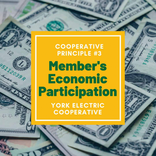 Cooperative Principle #3 is Members' Economic Participation