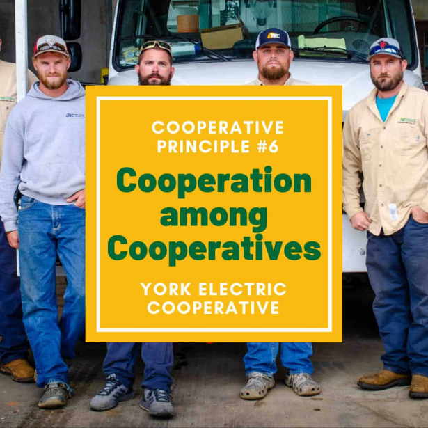 Cooperative Principle #6 is Cooperation among Cooperatives