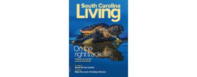 November/December 2019: Saving Sea Turtles