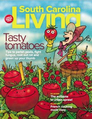 March 2020: Tasty Tomatoes