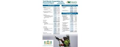 [PDF] 2018 Financial Report