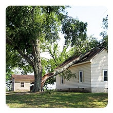 May 2011 storm left this large tree limb on a roof.